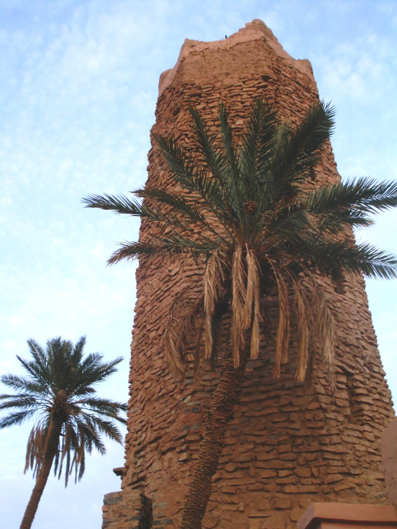 اقصى المغرب °ˆ~*¤®§(*§--فكيك مدينة القصور Mosquee_Pierre_05.JP