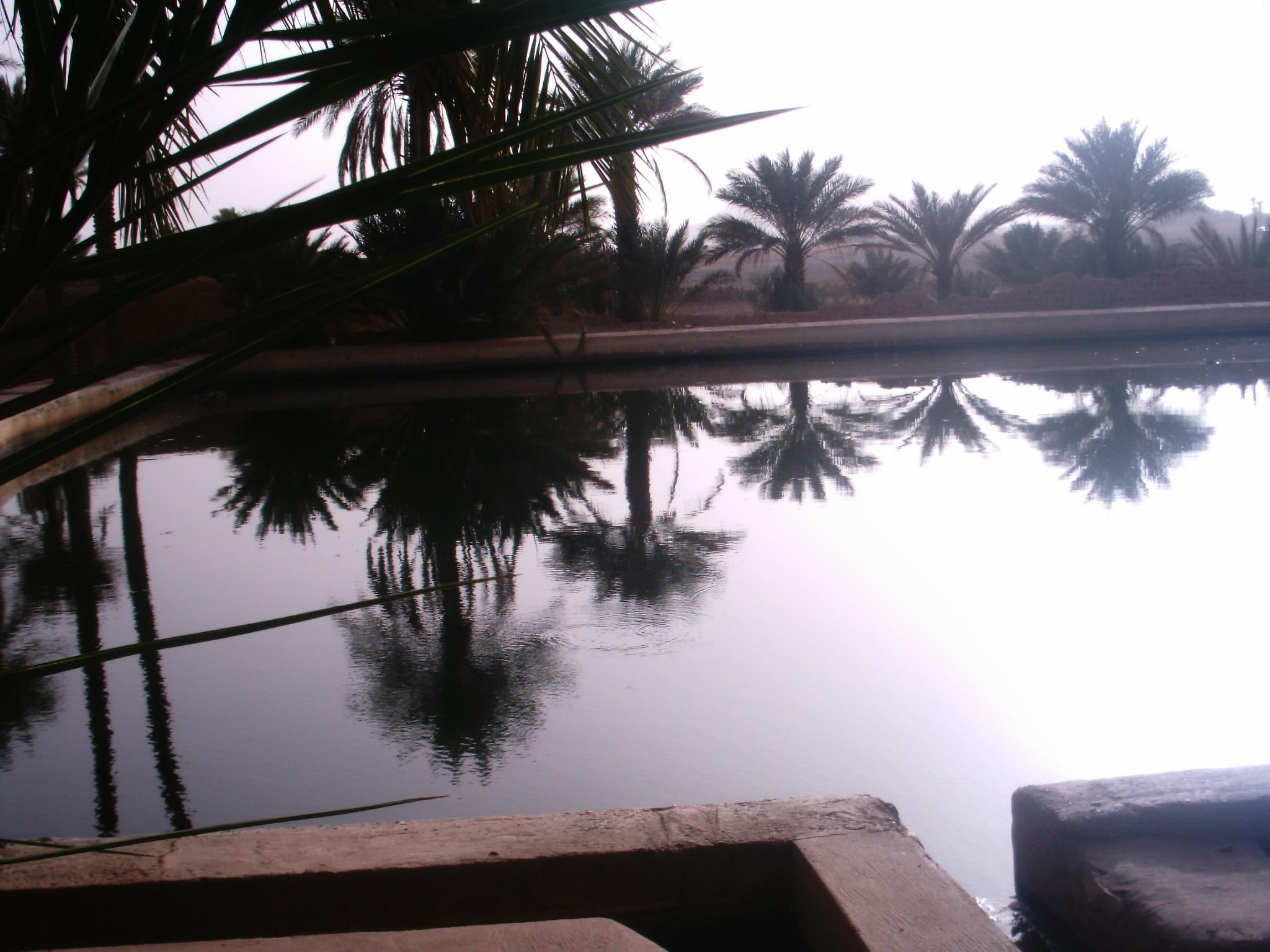 اقصى المغرب °ˆ~*¤®§(*§--فكيك مدينة القصور Sahrij_07.JPG