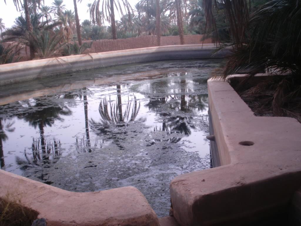 اقصى المغرب °ˆ~*¤®§(*§--فكيك مدينة القصور Sahrij_08.JPG