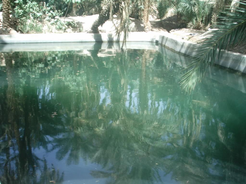 اقصى المغرب °ˆ~*¤®§(*§--فكيك مدينة القصور Sahrij_18.JPG