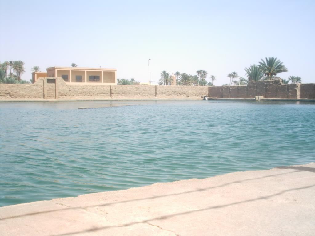 اقصى المغرب °ˆ~*¤®§(*§--فكيك مدينة القصور Sahrij_32.JPG
